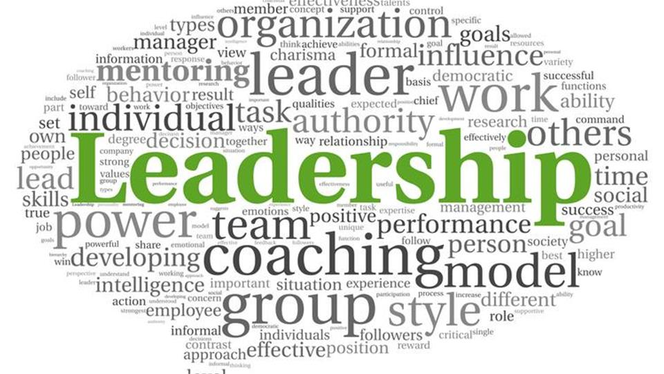 leadership in teams and decision groups management essay Understand how leadership is shared in self-managed teams and why it is effective understand the advantages of cross-functional teams and the difficulties for leaders understand procedures to facilitate team learning and build trust and cooperation.